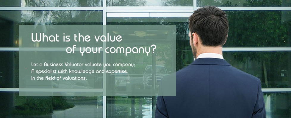 What is the value of your company?